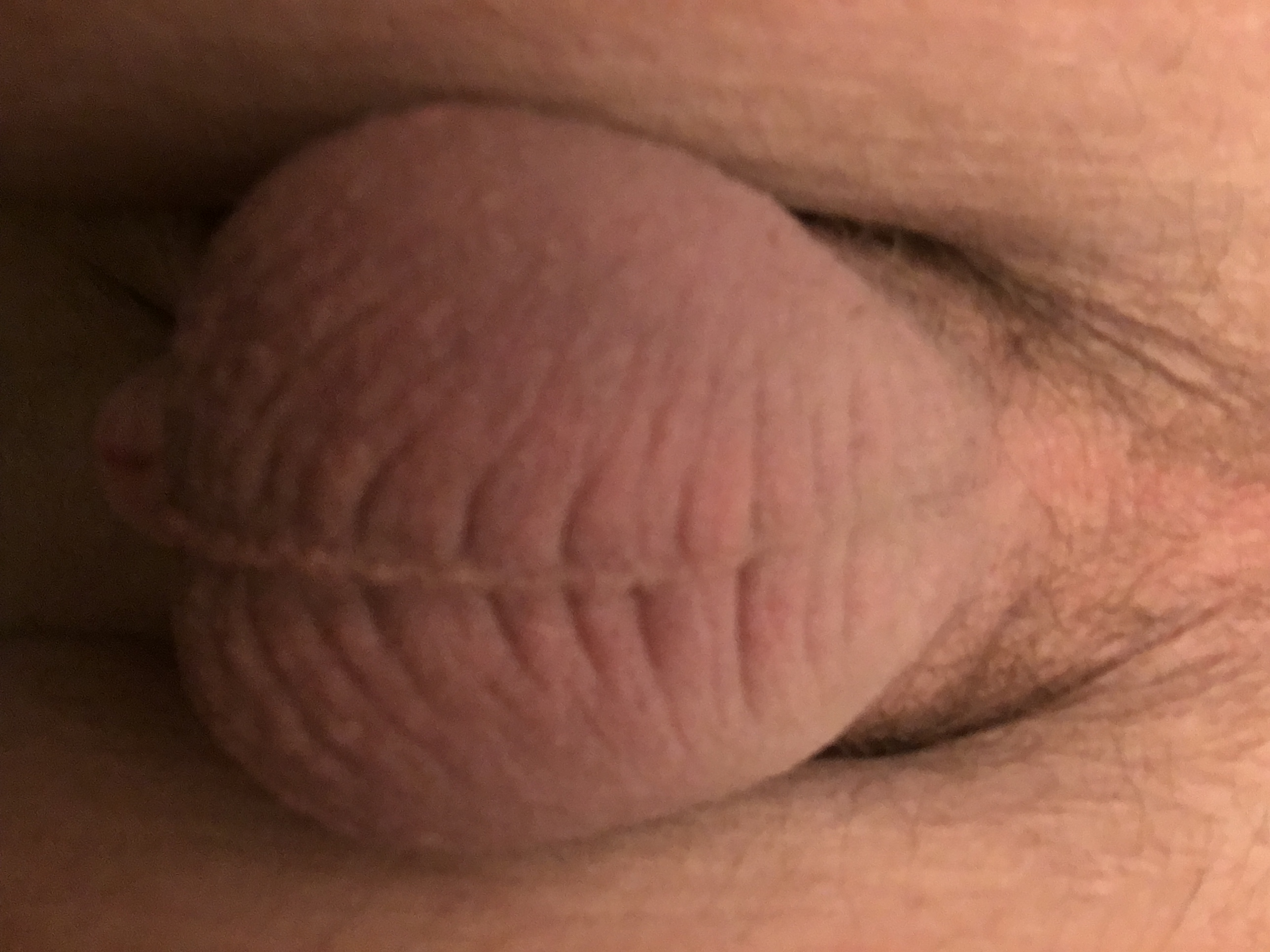 Smooth little cock (1/34)